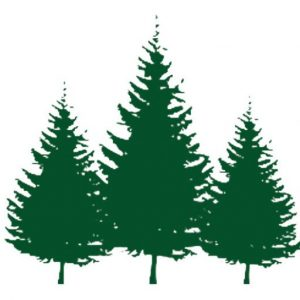 https://ena-oswego.org/wp-content/uploads/2021/01/cropped-ena-trees-white-bkgd.jpg